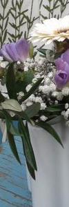 primavera_3